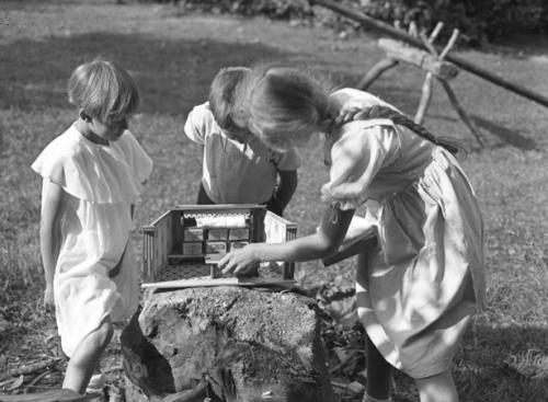 Linden Archiv: Kinder